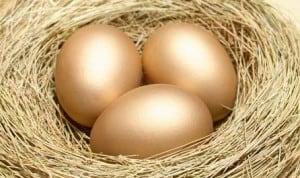 nest egg budget 2016